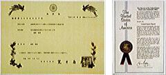 早稲田大学工学総合研究所センター 森実 敏倫 理学博士 特許【金属酸化物ガラスの膜および球体微粒子の製造方法】